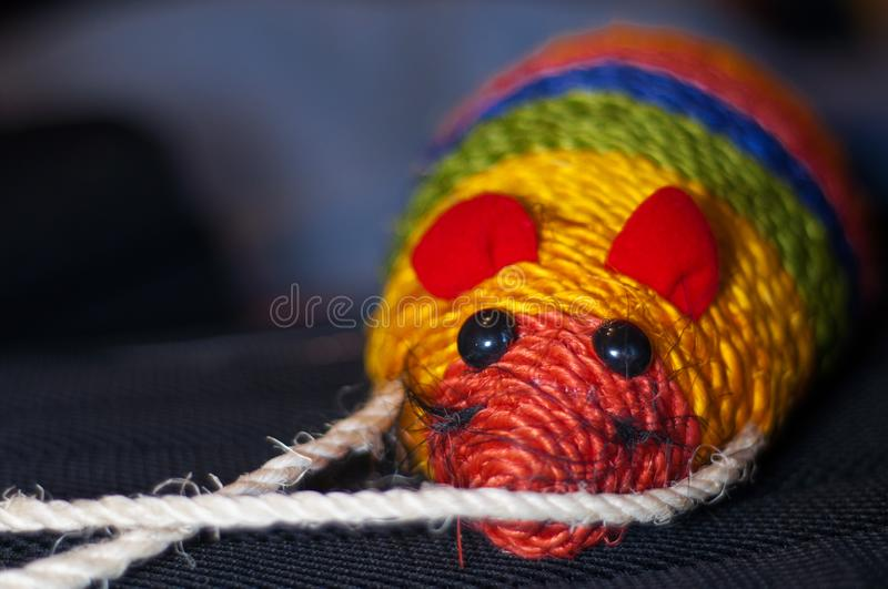 close up of a colorful mouse shaped cat scratching stock photography