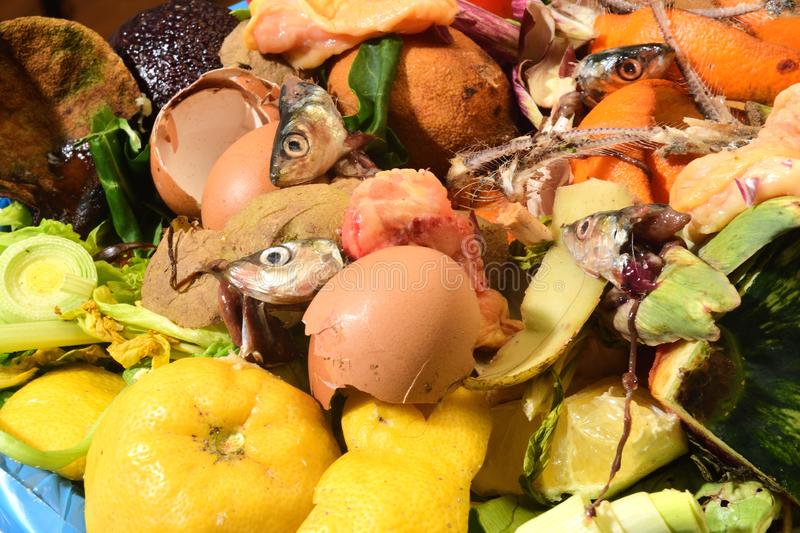 Close up of a compost royalty free stock photography