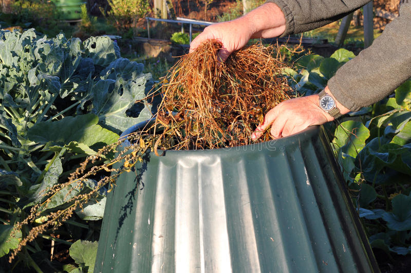 Download Close Up Of Compost Bin Being Filled. Stock Photo - Image: 26840794