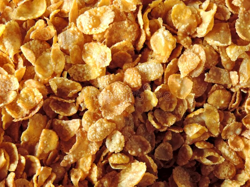 Close up of cornflakes kept ready for breakfast stock photography