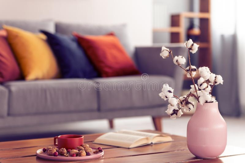Close-up of cotton flowers in a pink vase standing on a wooden coffee table with an elegant living room interior. In the background royalty free stock photo