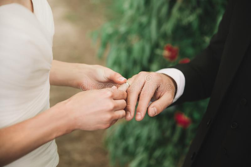 Close up. the couple exchanging their rings stock images