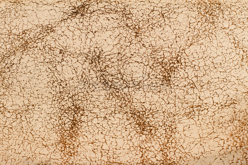 Close up of cream leather texture stock images