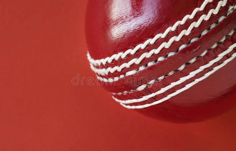 Close up of cricket ball isolated vector illustration