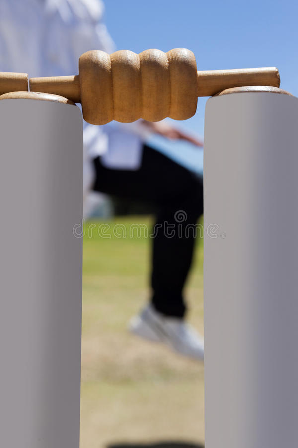 Close-up of cricket stumps against referee stock photo