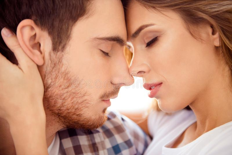 Close-up cropped portrait of his he her she nice-looking gorgeous attractive charming bearded guy caressing lady ideal. Match honey moon in light white style stock image