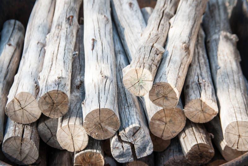 Close up cutting log stock image