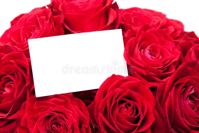 Close-up czerwień wzrastał z kartka z pozdrowieniami zdjęcia stock