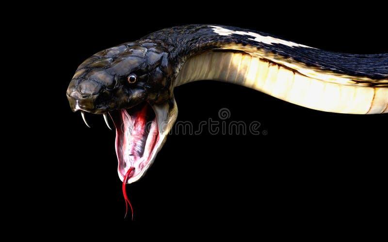Close-up of 3d King cobra snake. Attack isolated on black background, cobra snake stock illustration