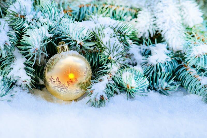 Close-up da bola do Natal perto do abeto-pé na neve com um refl imagens de stock