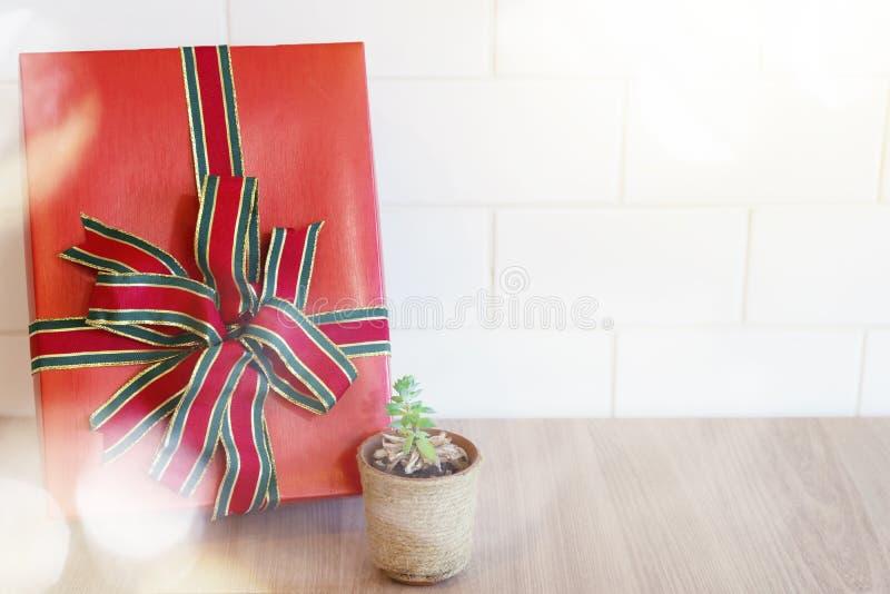 Close up da caixa de presente vermelha com o potenciômetro pequeno da árvore na tabela e no wh de madeira fotos de stock royalty free