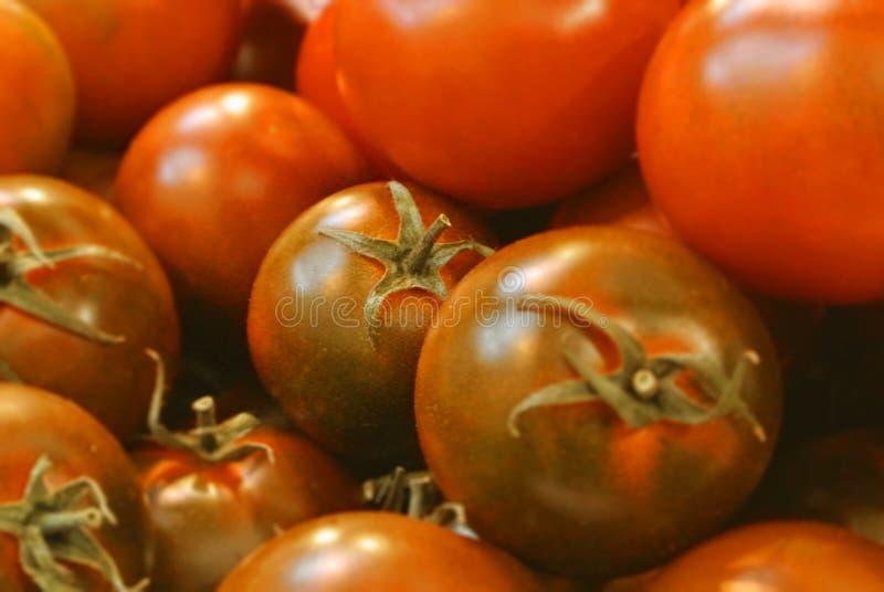 Close-up da cereja redonda pequena da bio exploração agrícola orgânica fresca verde vermelha fotografia de stock