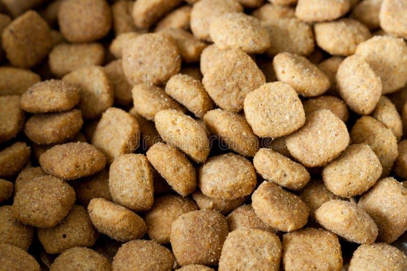 Close up da comida de gato fotos de stock