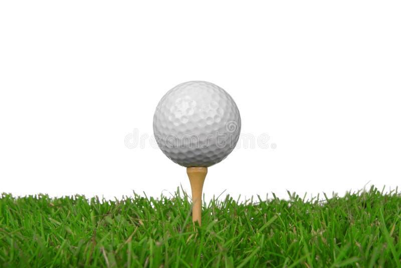 Close-up da esfera de golfe imagem de stock royalty free
