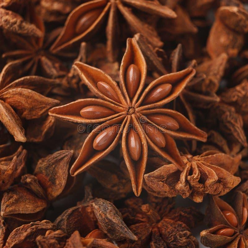 Close up da especiaria das estrelas do anis, fundo aromático abstrato foto de stock royalty free
