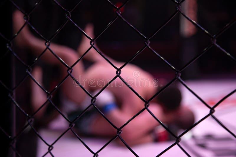 Close-up da gaiola do metal imagens de stock royalty free