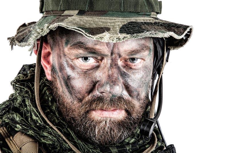 Close up da guerra da selva fotos de stock royalty free
