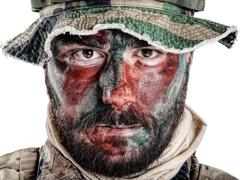Close up da guerra da selva foto de stock royalty free