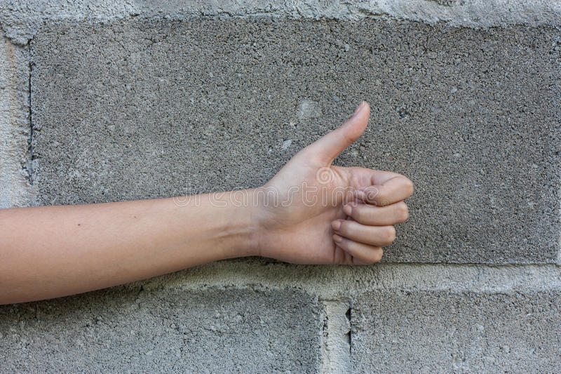 Close up da mão esquerda fêmea imagem de stock