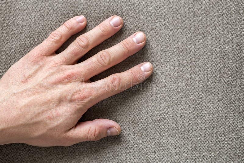 Close-up da mão masculino masculina com pele áspera e as unhas curtos que descansam no fundo liso do espaço da cópia, vista super fotografia de stock