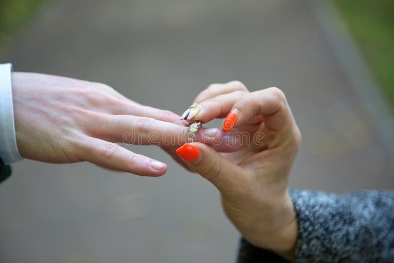 Close-up da mão da mulher que põe o dedo de Ring On Man dourado foto de stock