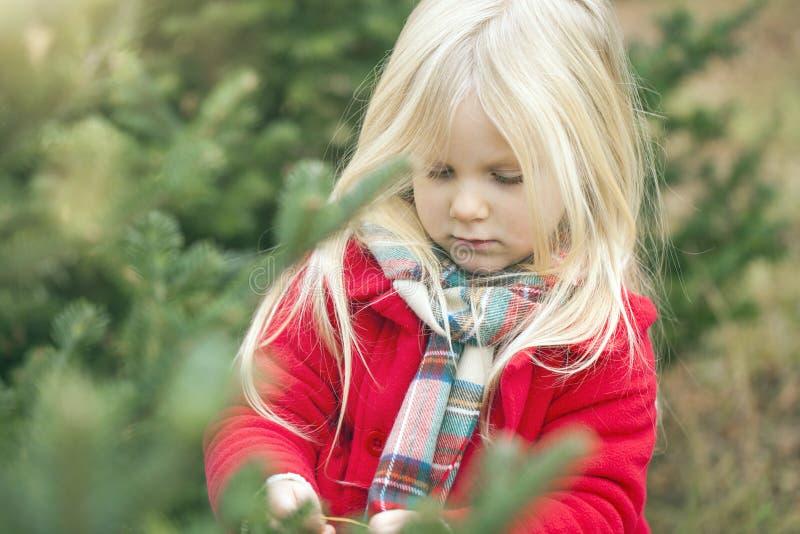 Close-up da menina séria que anda na floresta imagem de stock royalty free