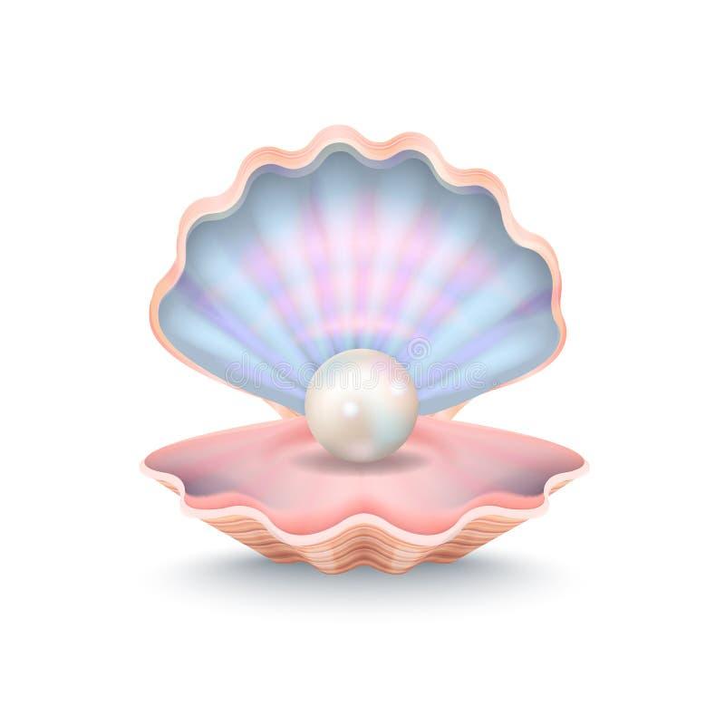 Close up da pérola e da Shell Vetora Illustration ilustração stock