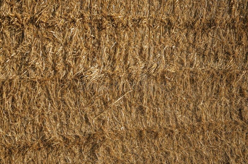 Close-up da palha de um pacote de feno em uma exploração agrícola foto de stock