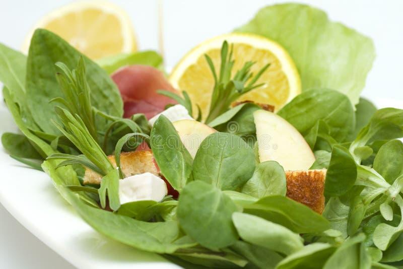 Close-up da salada fotos de stock royalty free