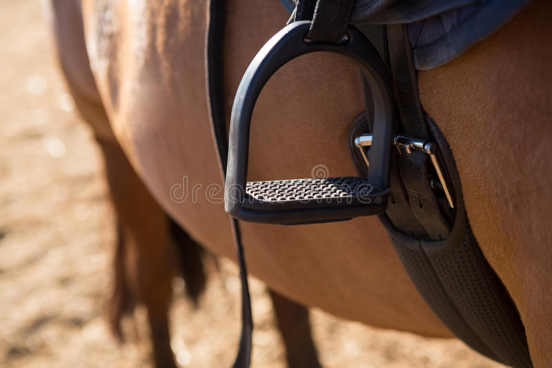 Close-up da sela amarrado no cavalo fotografia de stock