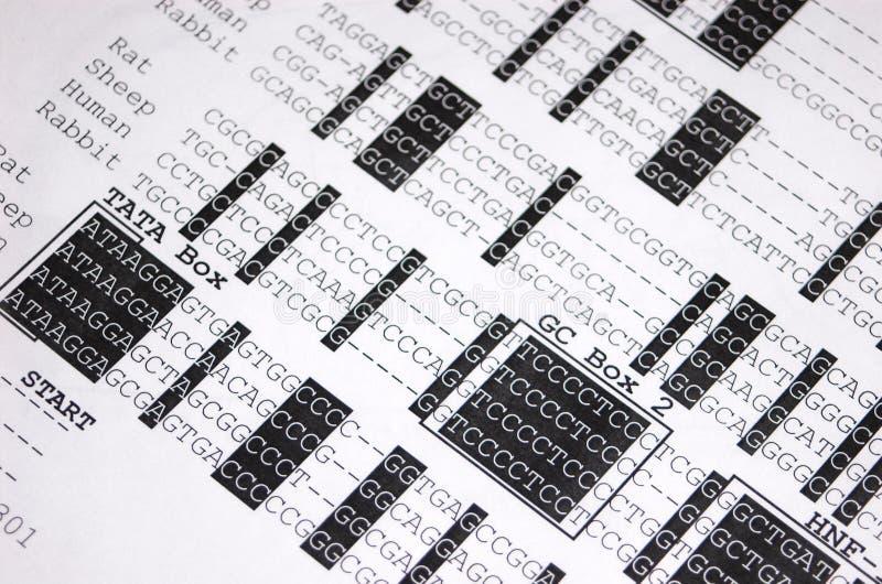 Close-up da seqüência do ADN fotografia de stock
