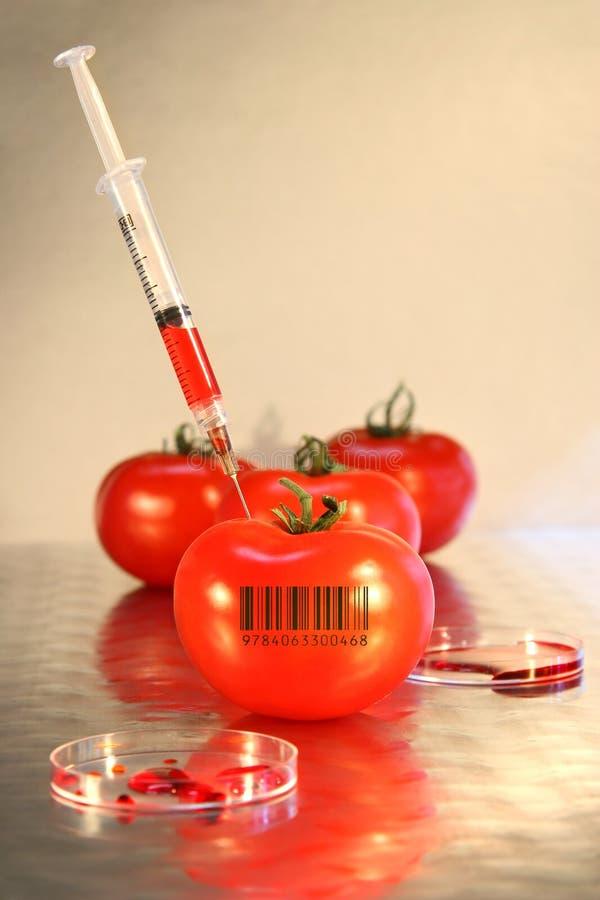 Close-up da seringa no tomate foto de stock royalty free