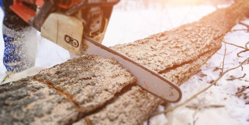 Close-up da serra de cadeia vendo no movimento, mosca do lenhador da serragem aos lados fotografia de stock royalty free