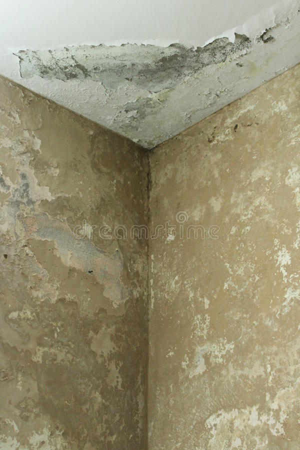 Close up of damp wall stock image