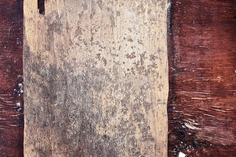 Close up dark brown and beige natural wood texture of a tree trunk. Grunge backdrop and background royalty free stock images