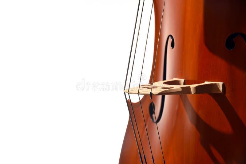 Close up das cordas do violoncelo no fundo branco foto de stock royalty free