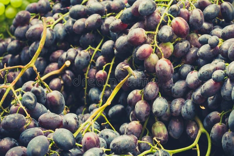 Close up das uvas imagens de stock royalty free