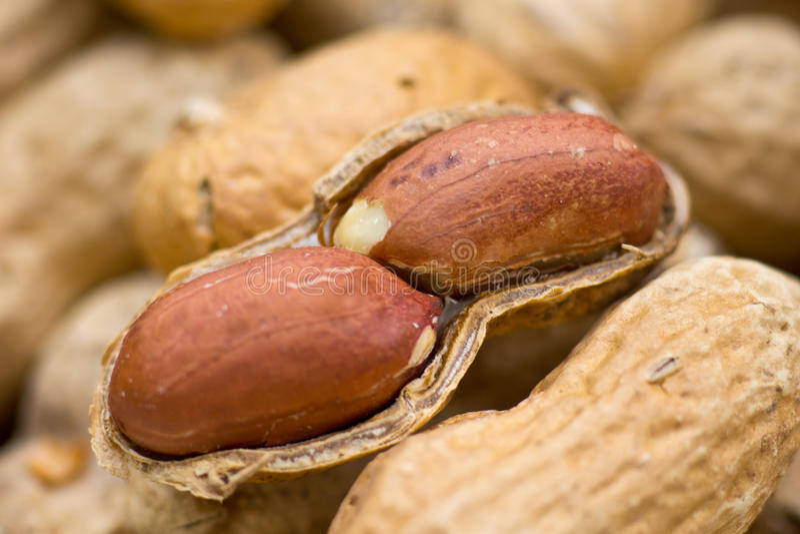 Close up de alguns amendoins imagem de stock royalty free