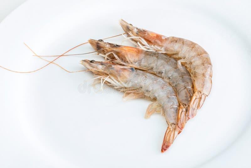 Close-up de camarões frescos, crus e inteiros fotografia de stock