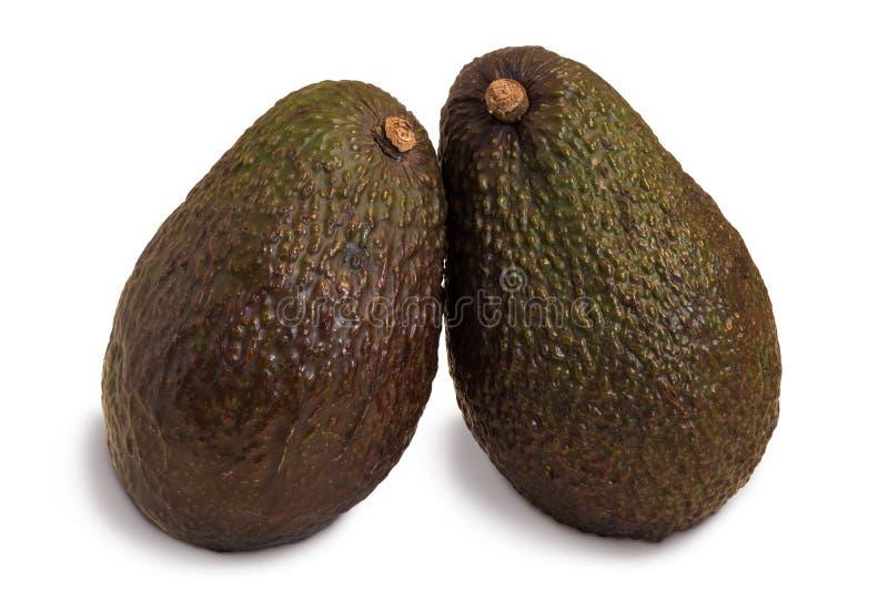 Close-up de dois abacates inteiros foto de stock