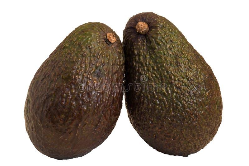 Close-up de dois abacates inteiros imagens de stock