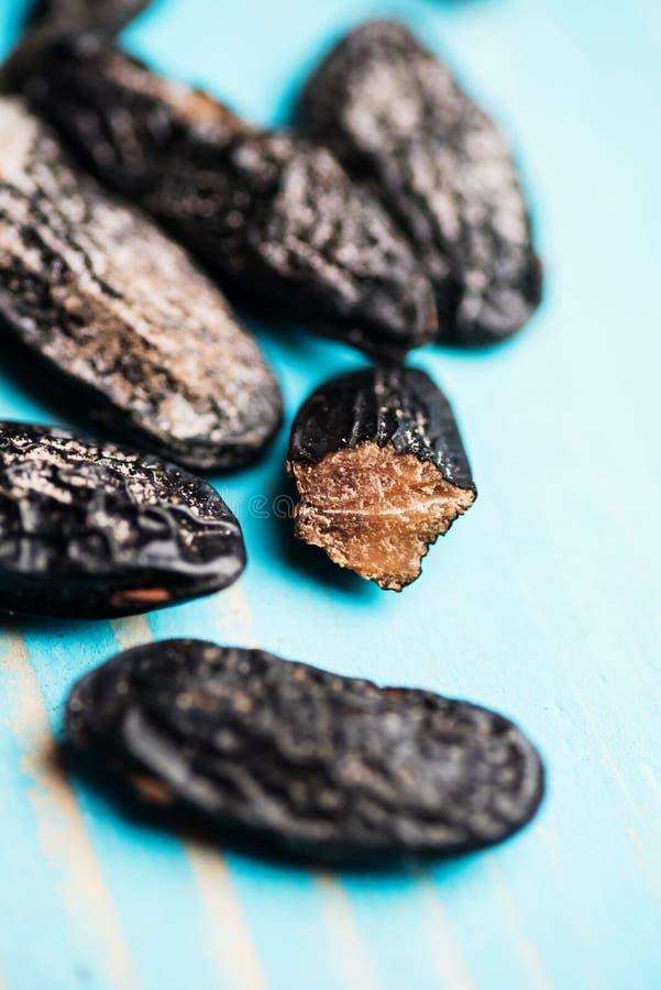 Close up de feijões de tonka foto de stock royalty free