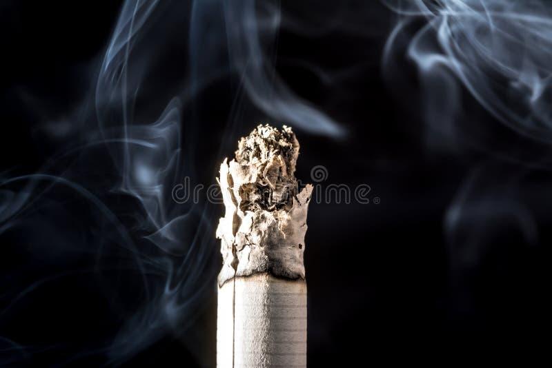 Close-up de fumo ardendo sem chama de queimadura do cigarro com o fumo bonito isolado no fundo preto imagem de stock