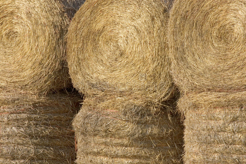 Close up de Haybales fotos de stock royalty free