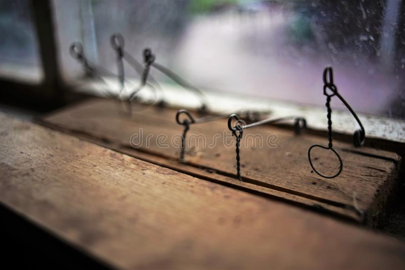 Close up de madeira caseiro da ratoeira Alternativas seguras para obter livrado dos ratos em sua casa fotografia de stock royalty free
