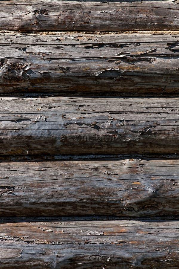 Close up de madeira do fundo da textura de Natutal unpainted fotografia de stock