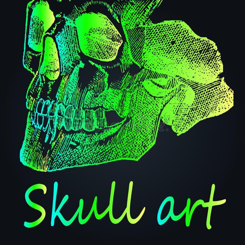 Close-up de néon verde do crânio Um esboço detalhado de uma tatuagem - um estilo novo da escola ilustração do vetor