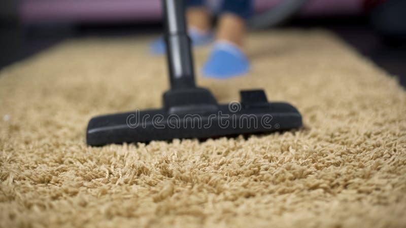 Close-up de poeira arrebatadora do aspirador de p30 do tapete caro, higiene do agregado familiar fotografia de stock