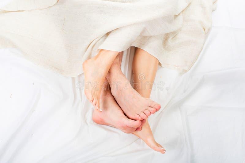 Close-up de quatro pés em uma cama sob a cobertura branca foto de stock