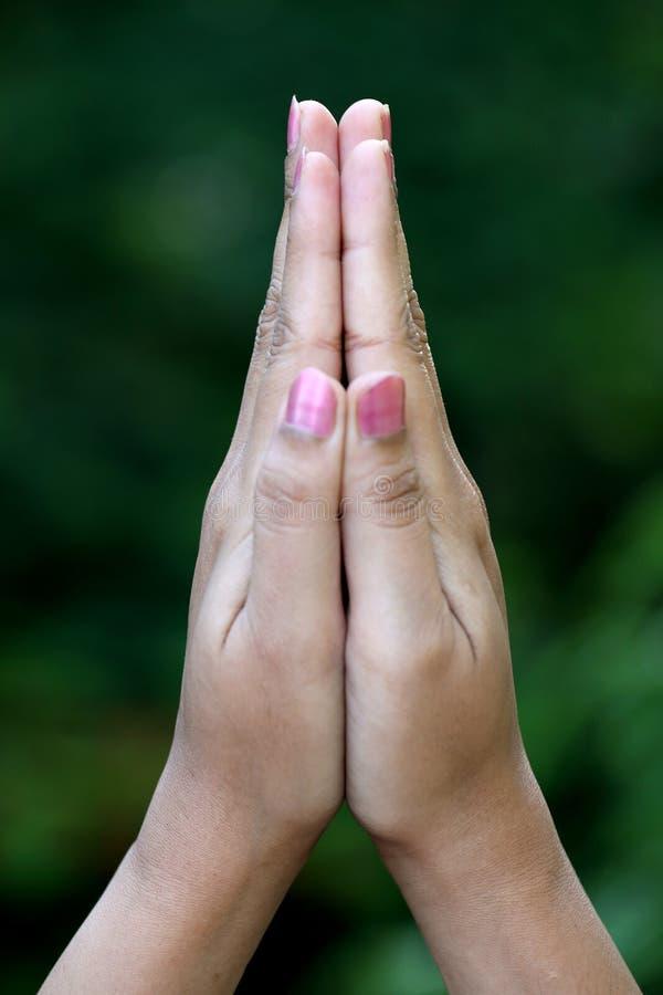 Close up de rezar as mãos foto de stock